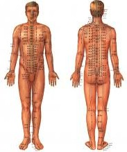 acupuncture on human body